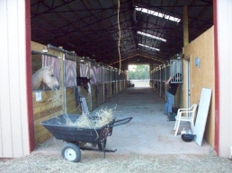 Barn Aisle with five sets of Cross Ties.  Sliding doors on all stalls with swing out feed door.  Three skylights so the barns is never dreary.