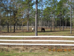 All pastures are 2-3 acres.